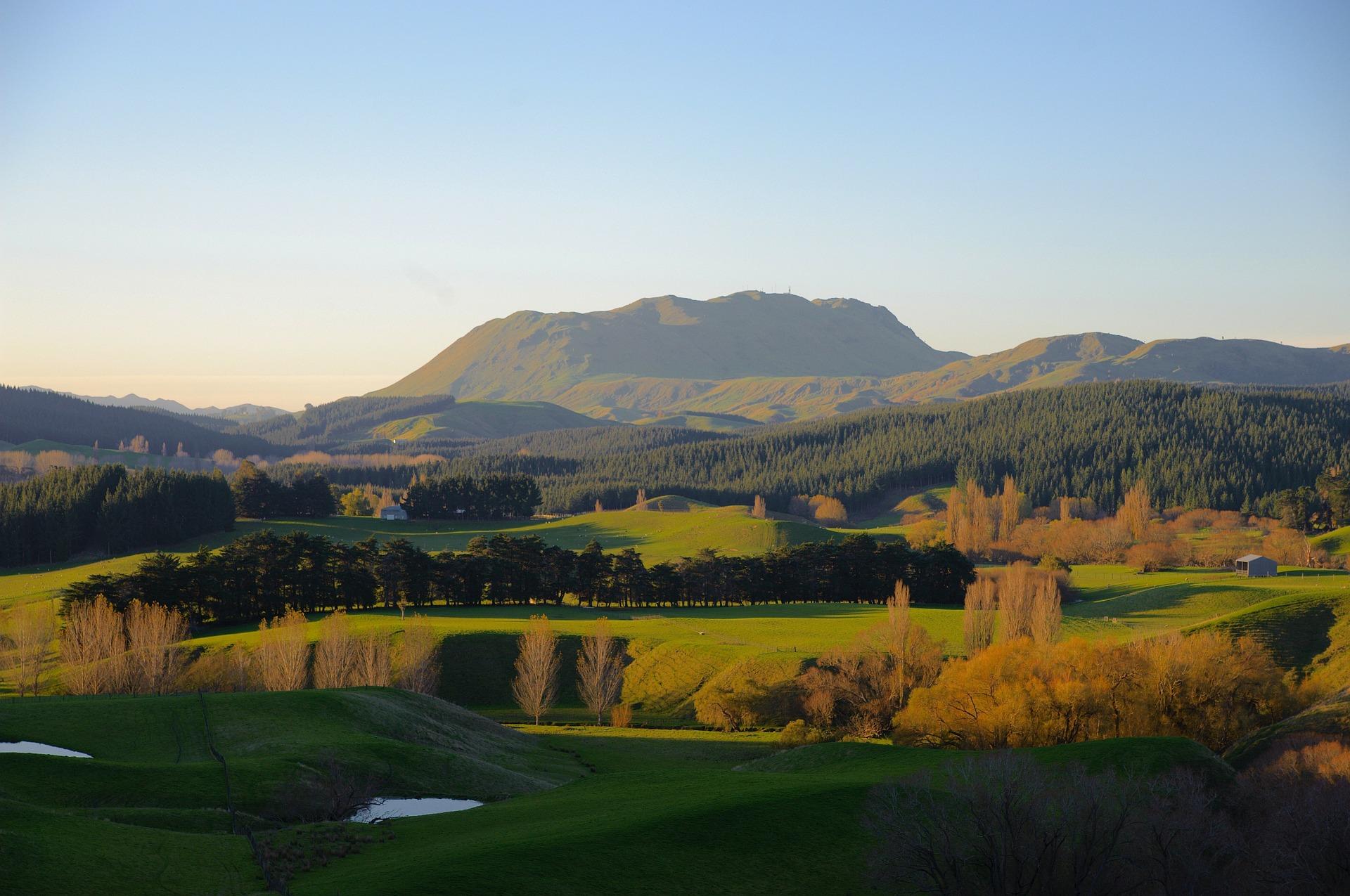 pole golfowe jaki jest koszt gry w golfa