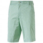 Puma Plaid Shorts green